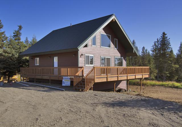 67693 Endless View Loop, Homer, AK 99603 (MLS #18-15555) :: RMG Real Estate Network | Keller Williams Realty Alaska Group