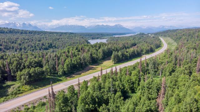 2187 N Parks Highway, Trapper Creek, AK 99683 (MLS #19-10809) :: Core Real Estate Group