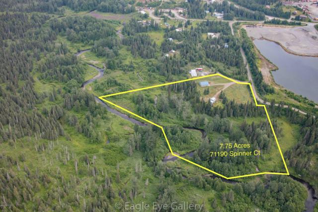71190 Spinner Court, Anchor Point, AK 99556 (MLS #19-11616) :: Wolf Real Estate Professionals
