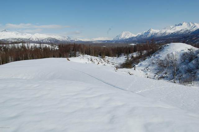 C006 N No Road Highway, Palmer, AK 99645 (MLS #19-14904) :: RMG Real Estate Network | Keller Williams Realty Alaska Group