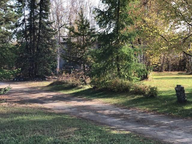 3201 S Buoyant Drive, Big Lake, AK 99652 (MLS #19-16215) :: Team Dimmick