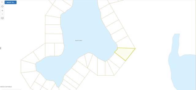 L40 No Road, Glennallen, AK 99588 (MLS #19-9614) :: Roy Briley Real Estate Group