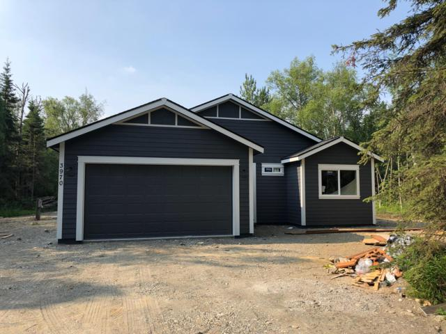 3970 E Tambert Drive, Wasilla, AK 99654 (MLS #19-9971) :: RMG Real Estate Network | Keller Williams Realty Alaska Group