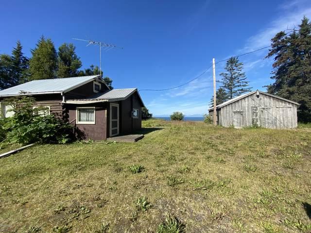 20975 Sterling Highway, Ninilchik, AK 99639 (MLS #20-11676) :: Wolf Real Estate Professionals