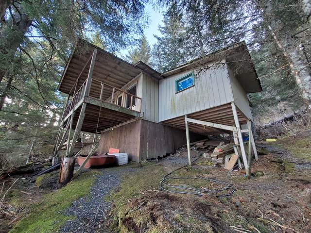 000 Sadie Cove, Homer, AK 99603 (MLS #20-14934) :: RMG Real Estate Network | Keller Williams Realty Alaska Group
