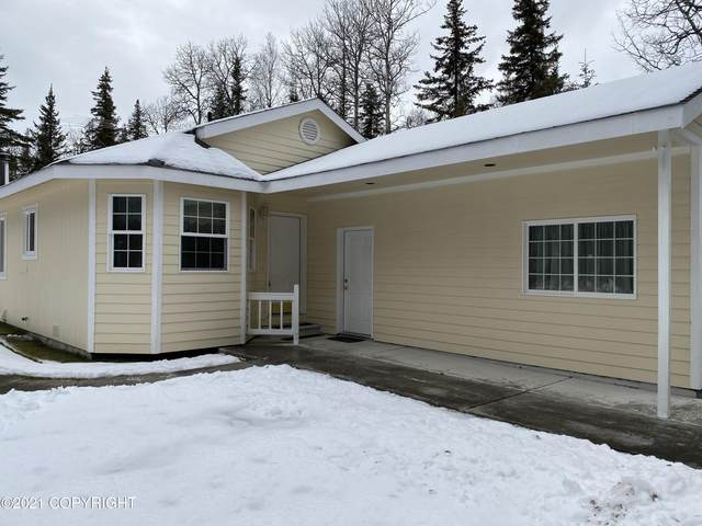 37219 Northridge Drive, Kenai, AK 99611 (MLS #20-17135) :: Wolf Real Estate Professionals