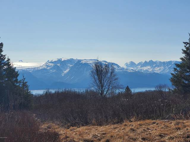 L5 B2 East End Road, Homer, AK 99603 (MLS #20-1885) :: RMG Real Estate Network | Keller Williams Realty Alaska Group