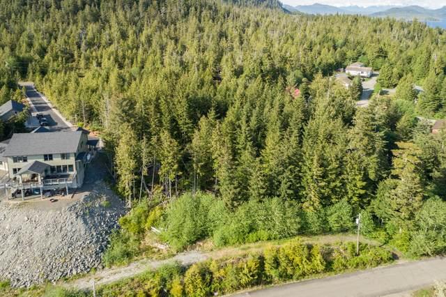 L100 Marine View Drive, Ketchikan, AK 99901 (MLS #20-6486) :: Wolf Real Estate Professionals