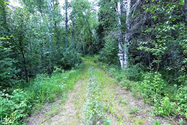 L3 Tofty Road, Manley Hot Springs, AK 99756 (MLS #20-8675) :: Team Dimmick