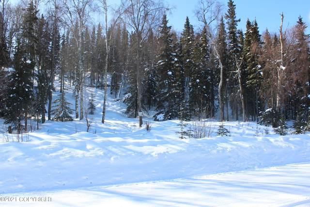 Tr 28 Tustumena Terraces Sub, Kasilof, AK 99610 (MLS #21-3260) :: Wolf Real Estate Professionals