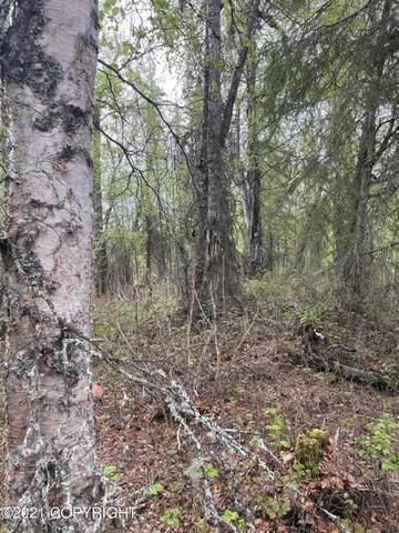 1620 N Bow Street, Wasilla, AK 99623 (MLS #21-5521) :: Alaska Realty Experts