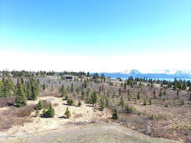 51778 East End Road, Homer, AK 99603 (MLS #21-7438) :: Wolf Real Estate Professionals