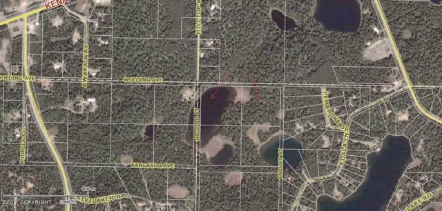 Tr 1-2 Wolding Avenue, Nikiski/North Kenai, AK 99635 (MLS #11-10924) :: Wolf Real Estate Professionals