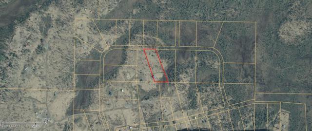 L5B B2 Caribou Homestead Loop, Homer, AK 99603 (MLS #12-6681) :: Powered By Lymburner Realty