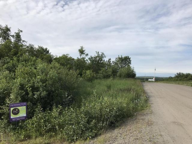 L13 B9 Naknek River Subdivision, Naknek, AK 99633 (MLS #18-7033) :: Channer Realty Group