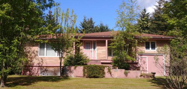 250 Fulmore Avenue, Seldovia, AK 99663 (MLS #18-7477) :: Northern Edge Real Estate, LLC