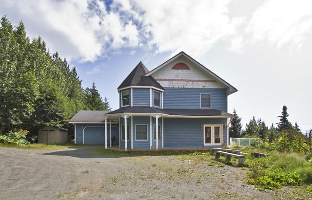1585 Race Road, Homer, AK 99603 (MLS #19-12805) :: Roy Briley Real Estate Group
