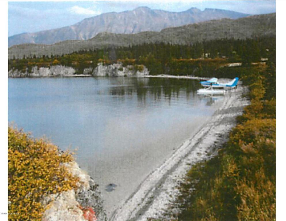 L1-2 Iliamna Lake - Photo 1