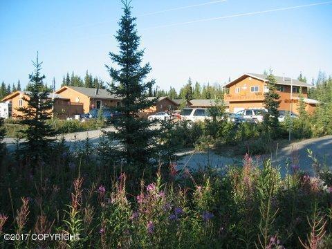 37180 Glacier Blue Street, Soldotna, AK 99669 (MLS #17-10087) :: Northern Edge Real Estate, LLC