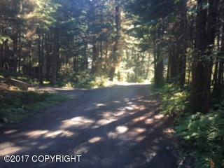 NHN Jewel Mine Road, Girdwood, AK 99587 (MLS #17-10461) :: Real Estate eXchange