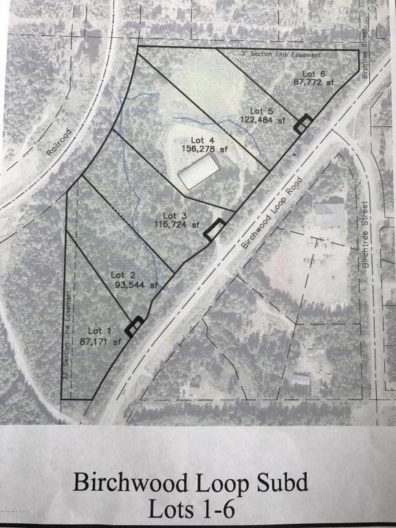 L2 S Birchwood Loop Road, Chugiak, AK 99567 (MLS #17-10939) :: Channer Realty Group