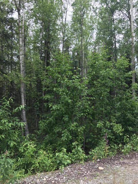530 N Wandering Way, Wasilla, AK 99623 (MLS #17-12061) :: Real Estate eXchange