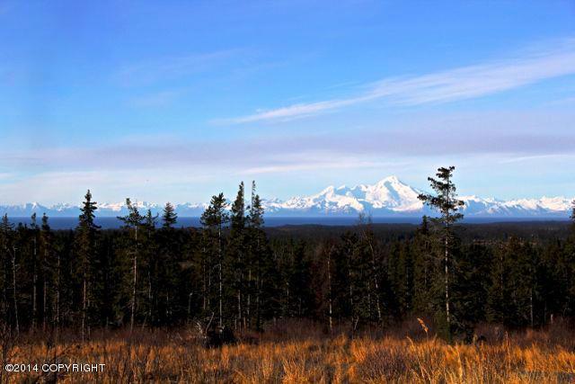 L5 Endless View Loop, Homer, AK 99603 (MLS #17-12543) :: Channer Realty Group
