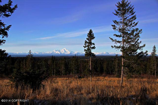 L6 Endless View Loop, Homer, AK 99603 (MLS #17-12544) :: RMG Real Estate Network | Keller Williams Realty Alaska Group