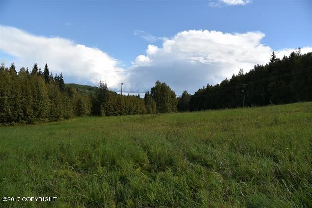 B6 Old Chena Hot Springs Road, Fairbanks, AK 99712 (MLS #17-14558) :: Northern Edge Real Estate, LLC