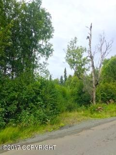 4050 Virgo Avenue, Anchorage, AK 99516 (MLS #17-14756) :: Team Dimmick