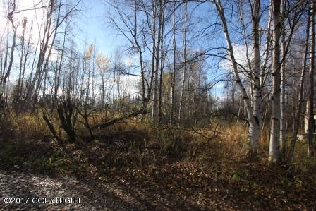 19397 Klondike Street, Chugiak, AK 99567 (MLS #17-17197) :: RMG Real Estate Experts