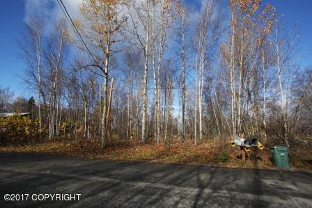 19369 Klondike Street, Chugiak, AK 99567 (MLS #17-17198) :: Northern Edge Real Estate, LLC