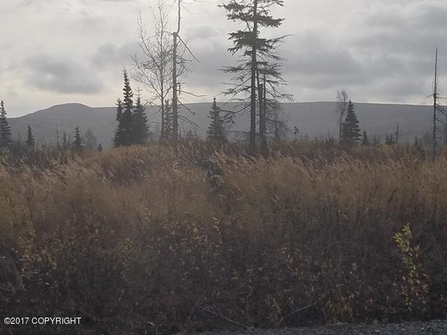 53702 Oil Well Road, Ninilchik, AK 99603 (MLS #17-17327) :: Synergy Home Team