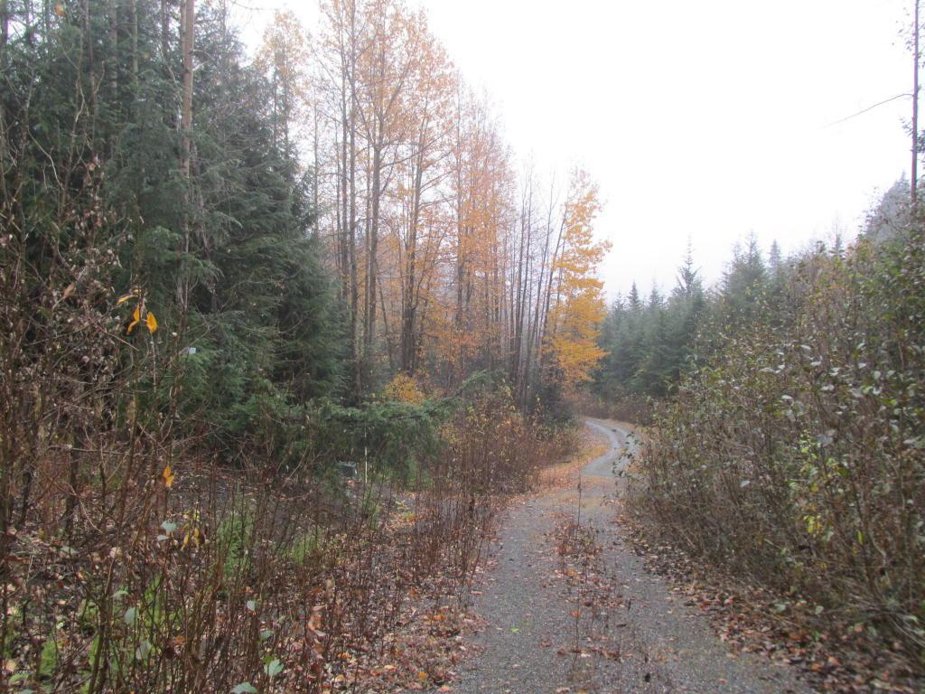 000 White Beaver Way - Photo 1