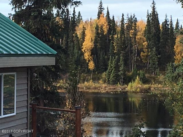 49760 Leisure Lake Drive, Soldotna, AK 99669 (MLS #17-17509) :: Channer Realty Group