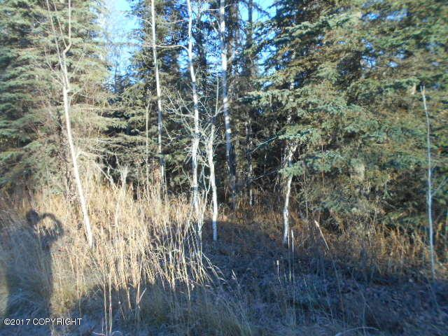 L1 B6 Funny River Road, Soldotna, AK 99669 (MLS #17-17641) :: Channer Realty Group