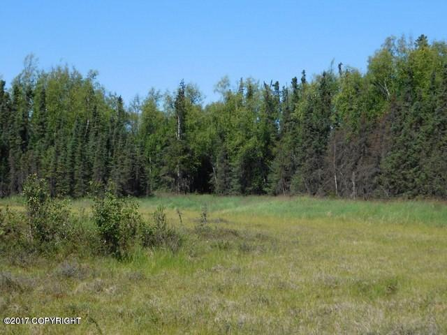 5234 S This Way, Wasilla, AK 99654 (MLS #17-18204) :: Channer Realty Group