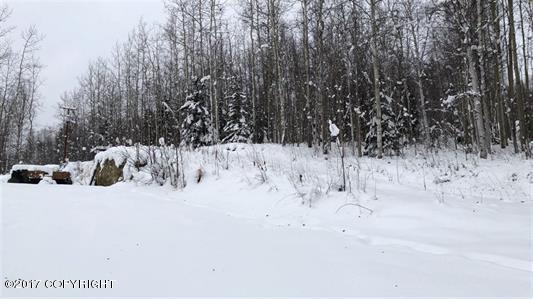2622 Stellar Way, Fairbanks, AK 99712 (MLS #17-19360) :: Channer Realty Group