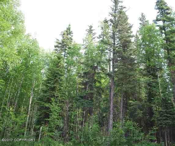 1538 N Rader Drive, Fairbanks, AK 99709 (MLS #17-19690) :: RMG Real Estate Network | Keller Williams Realty Alaska Group