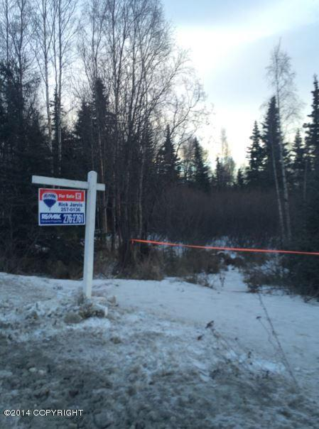 4020 Rabbit Creek Road, Anchorage, AK 99516 (MLS #17-19841) :: RMG Real Estate Experts
