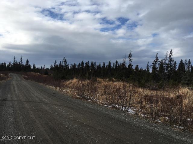 L9 Harry Olson Road - Photo 1