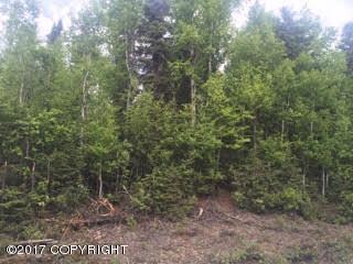 15217 E Susitna Landing Road, Willow, AK 99688 (MLS #17-9443) :: RMG Real Estate Experts