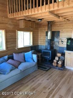 21938 Big Mountain Drive, Talkeetna, AK 99676 (MLS #17-9871) :: RMG Real Estate Experts