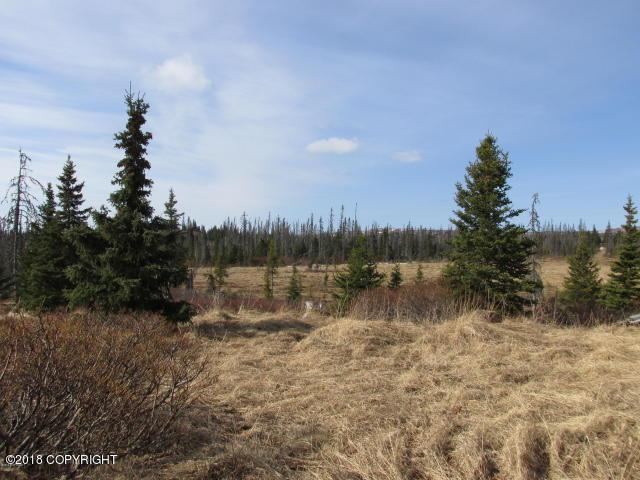 Remote Fox Creek, Homer, AK 99603 (MLS #18-10259) :: Team Dimmick
