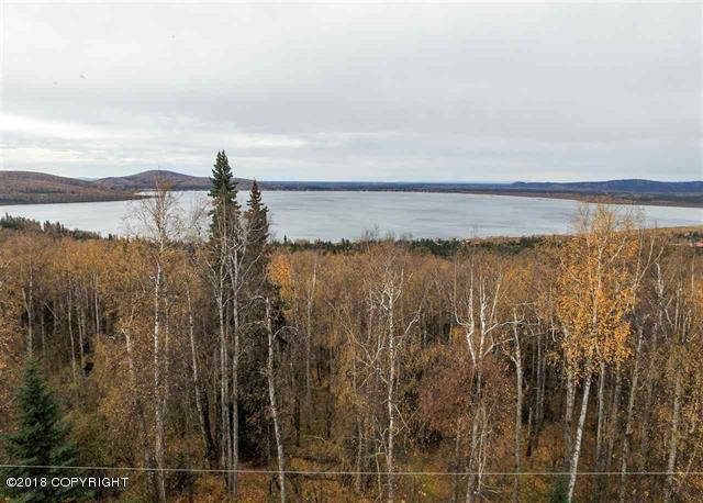 L6 B1 White Birch Road, Salcha, AK 99714 (MLS #18-1029) :: Core Real Estate Group