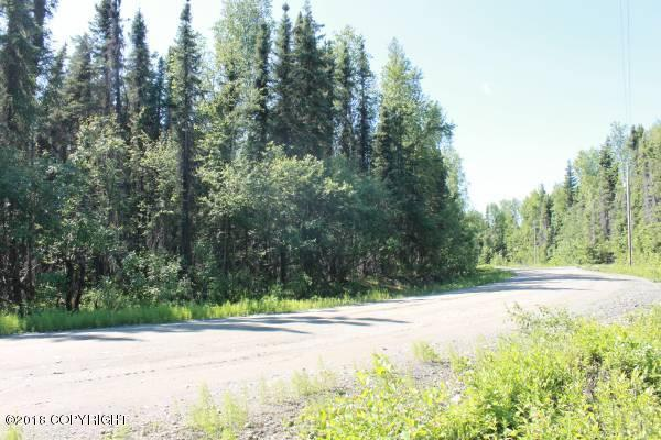 14000 E Wilderness Rim Road, Willow, AK 99688 (MLS #18-10340) :: RMG Real Estate Network | Keller Williams Realty Alaska Group