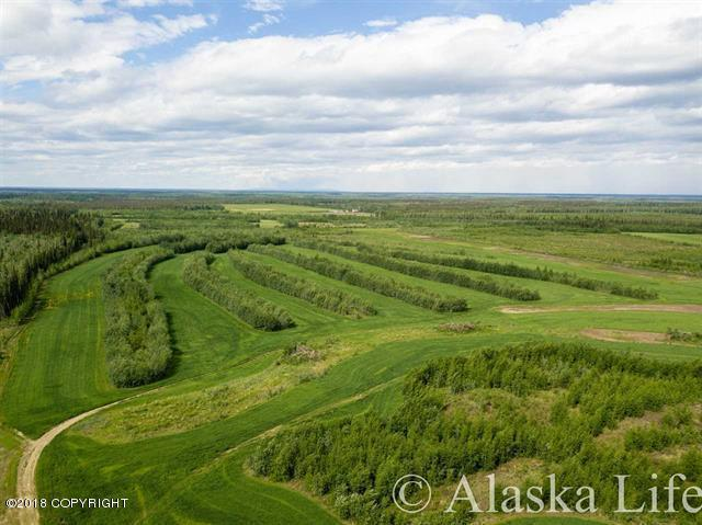 Mi 315 Parks Highway, Nenana, AK 99760 (MLS #18-10349) :: Core Real Estate Group