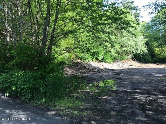 6364 Rebel Road, Ketchikan, AK 99901 (MLS #18-10707) :: Core Real Estate Group