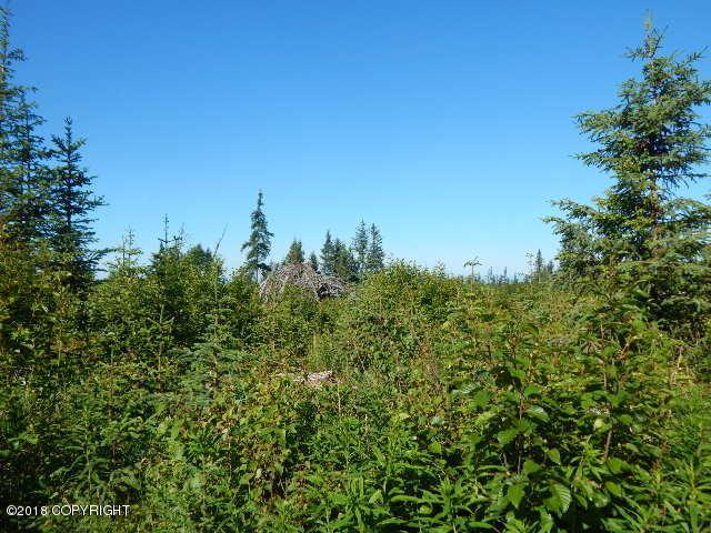 37797 Baneberry Place, Anchor Point, AK 99556 (MLS #18-11988) :: Core Real Estate Group