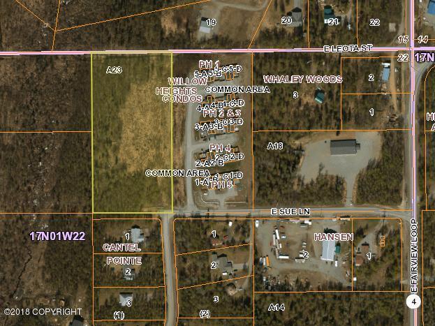 901 E Sue Lane, Wasilla, AK 99654 (MLS #18-12331) :: Synergy Home Team